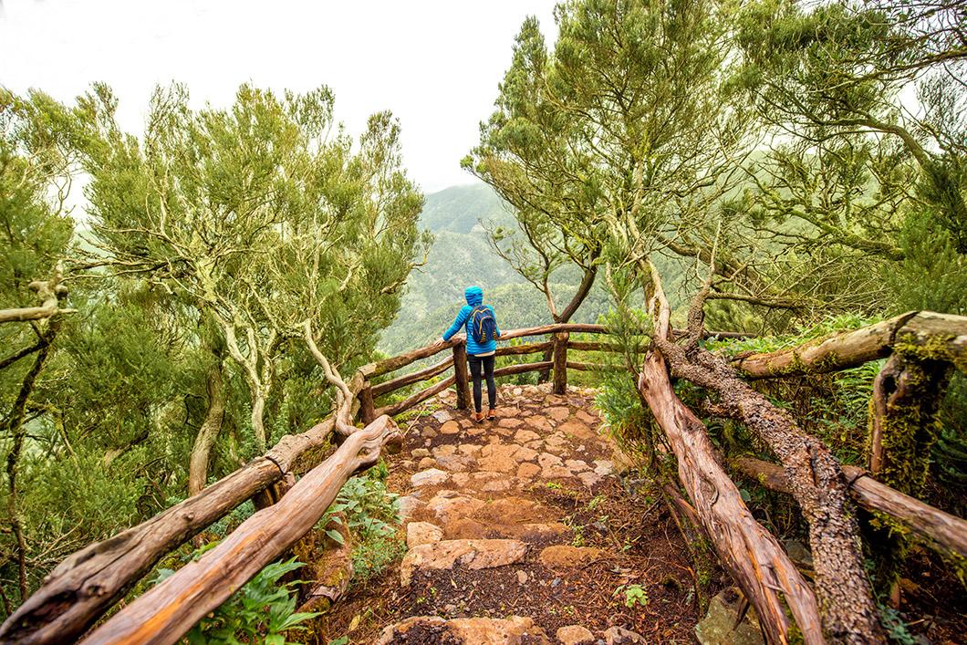 Ein Wanderer genießt die Aussicht in den Garajonay-Nationalpark