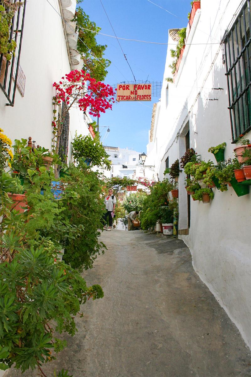 Weiße Fassaden geschmückt mit farbenfrohen Blumen