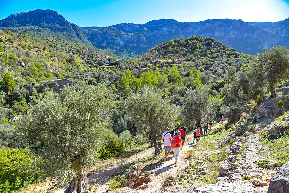Wanderung in der Serra de Tramuntana