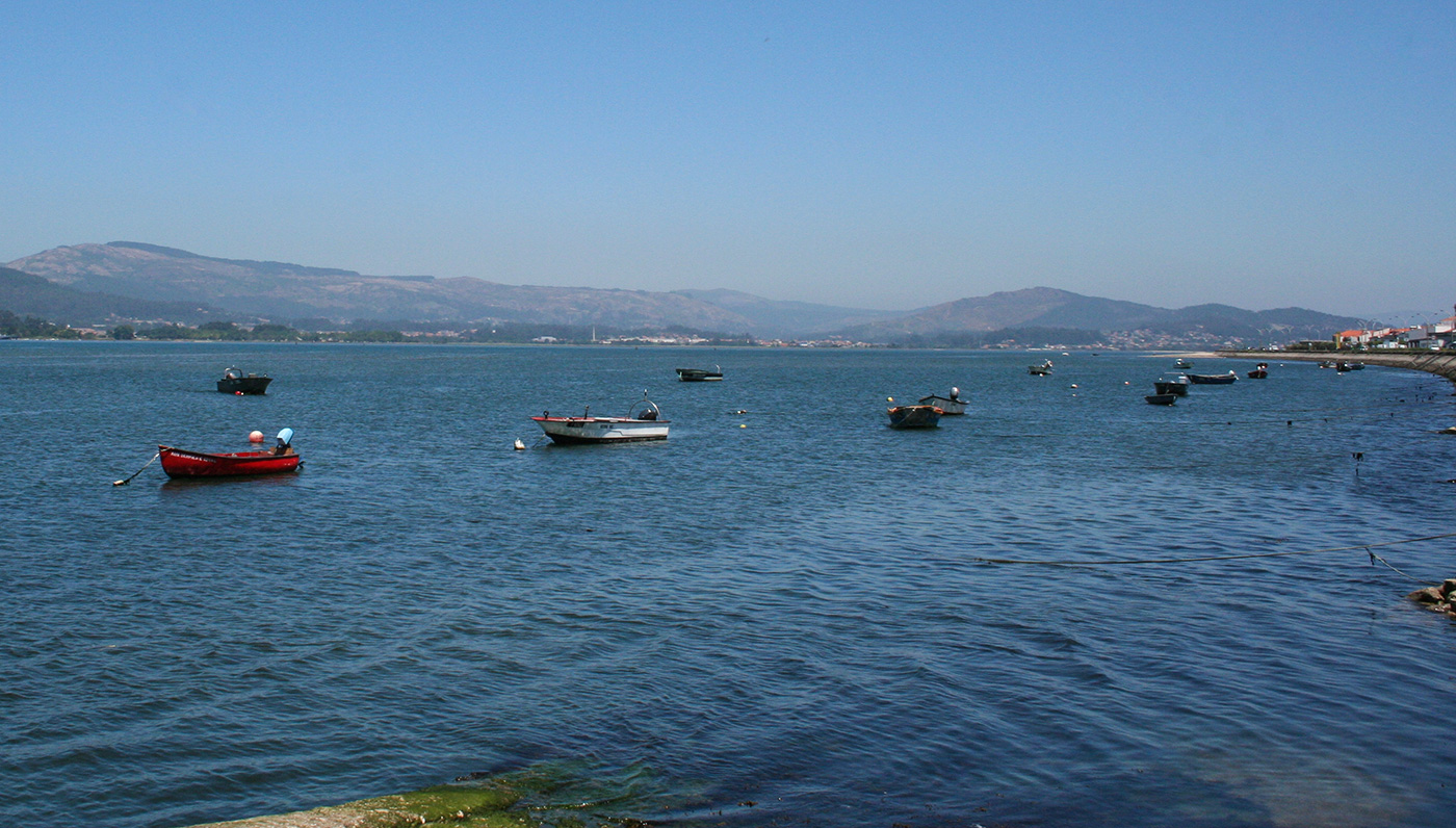 Fischerboote im Hafen von Caminha