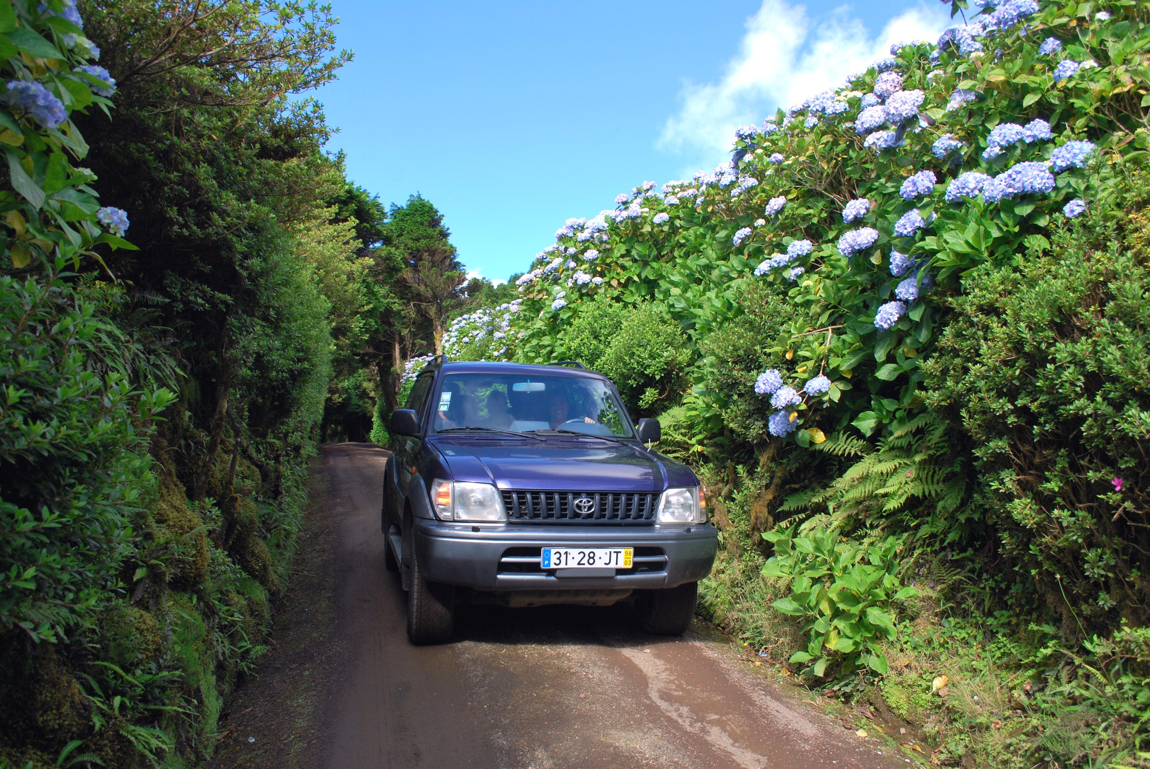 Azoren_Jeep-Safari 1_Sao Miguel