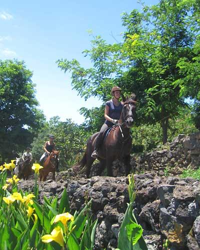 Quinta da Terca_Entlang der Steinmauern