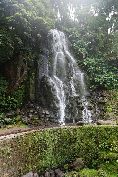 Sao Miguel_Wasserfall