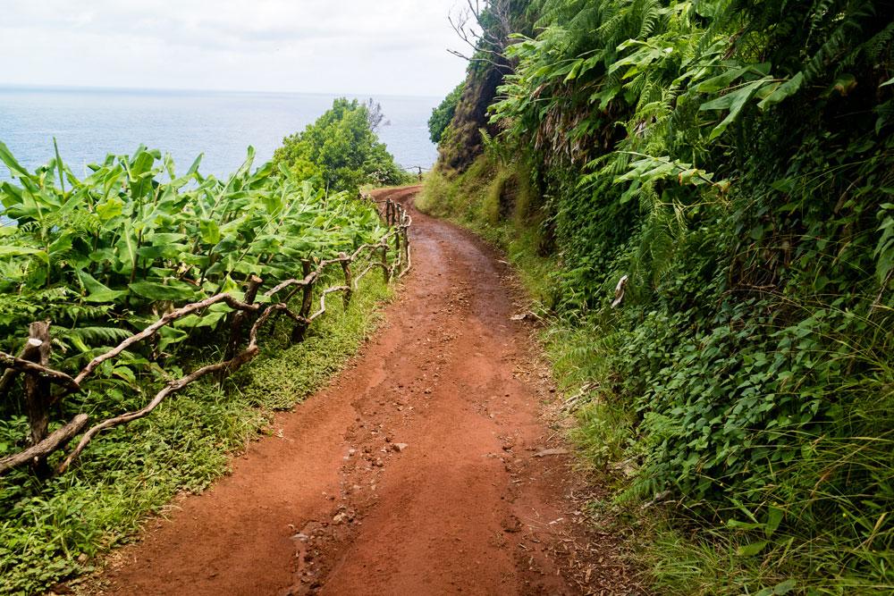 Azoren_Wanderweg_Sao Jorge