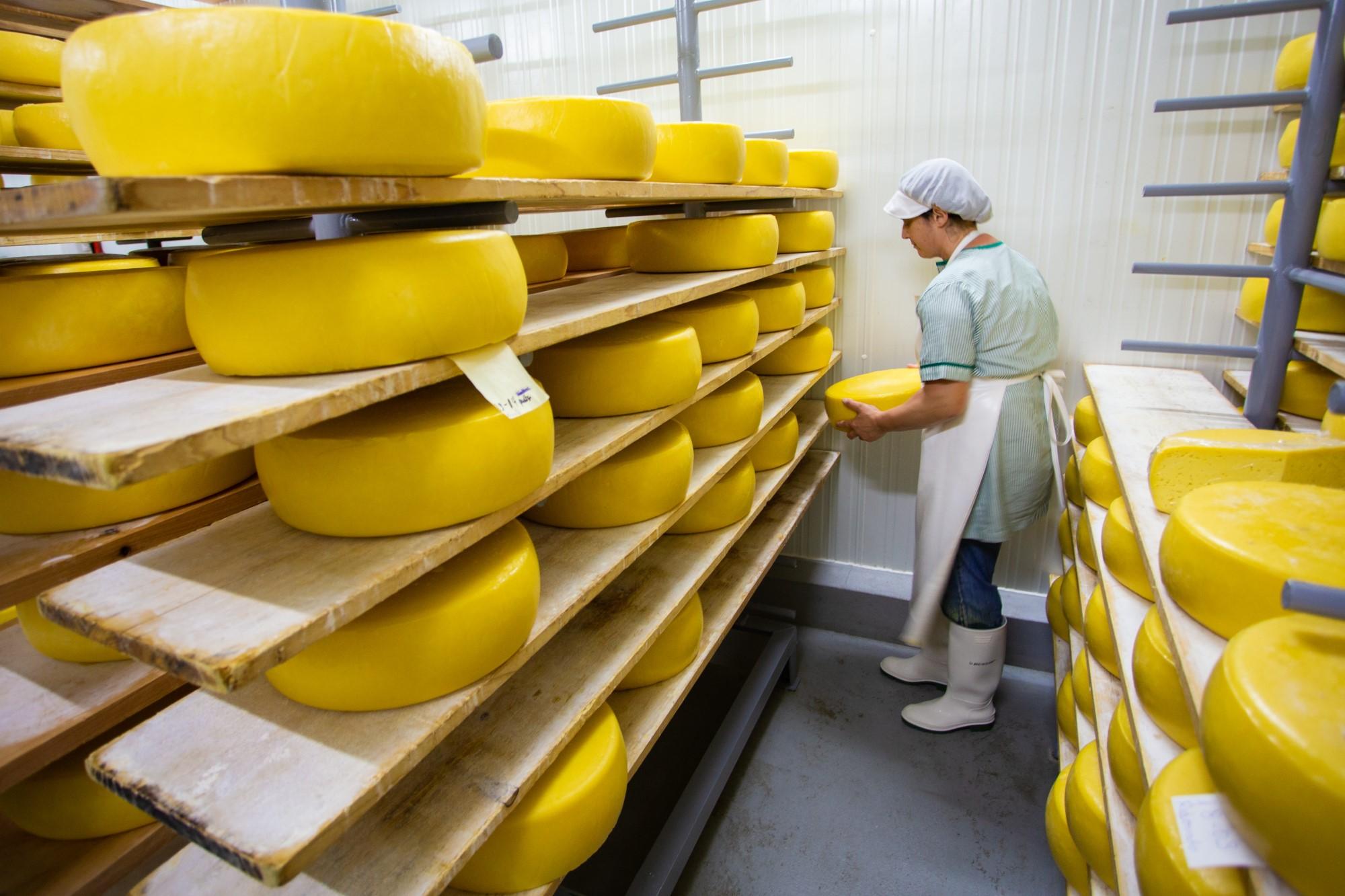 Käsefabrik auf den Azoren