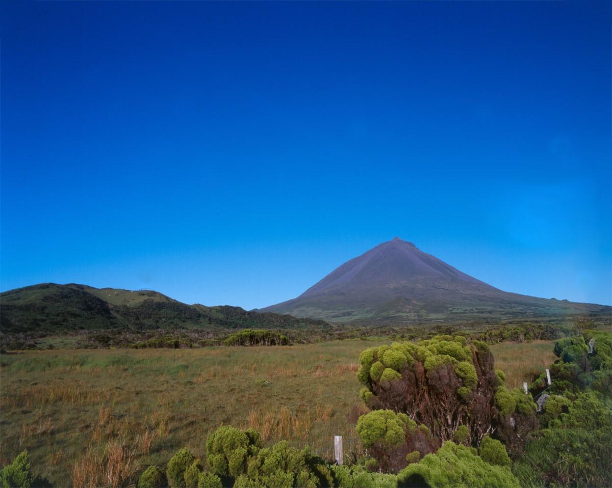 Landschaft um den Mount Pico