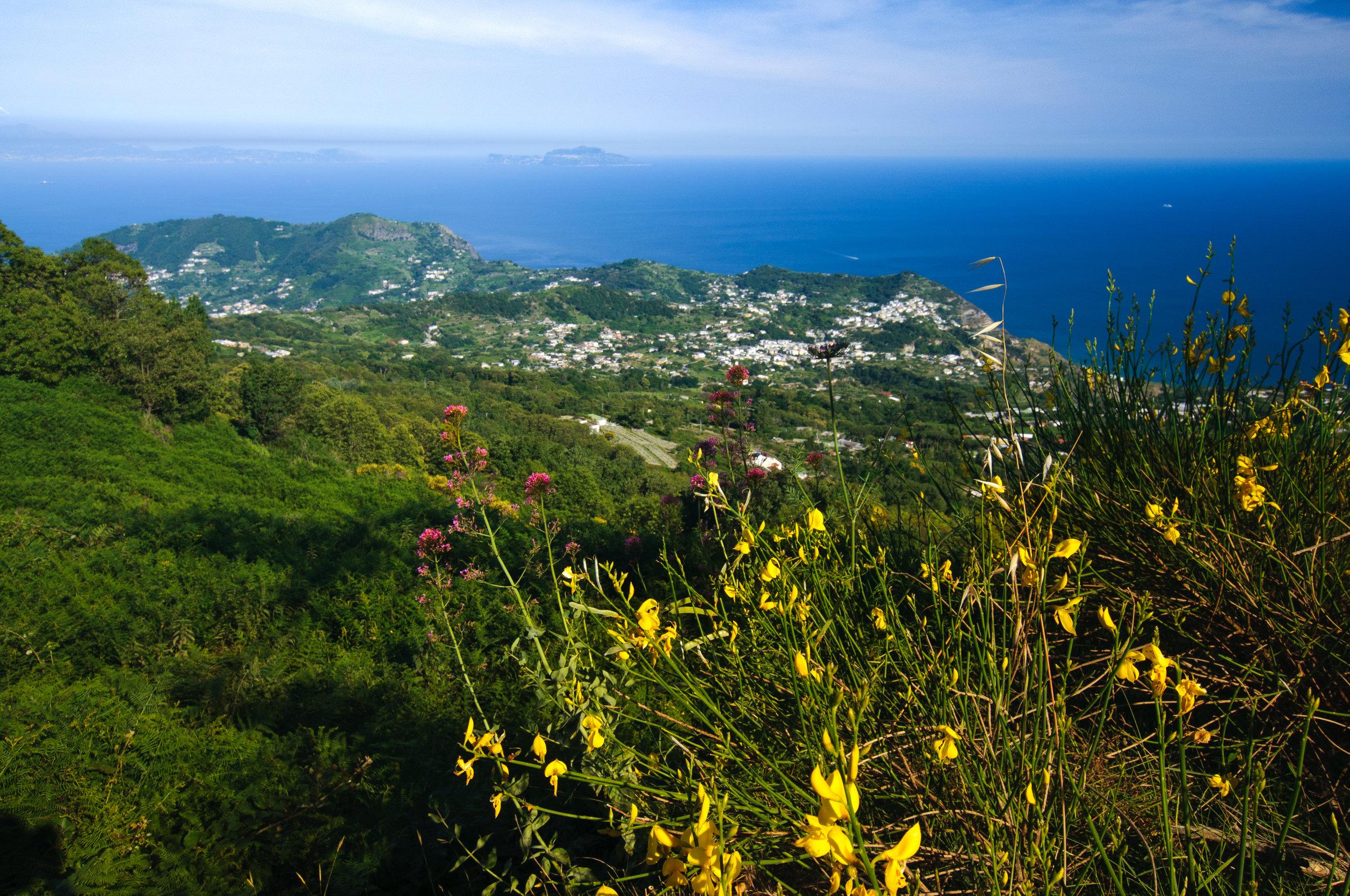 Ischia_Blick vom Monte Epomeo