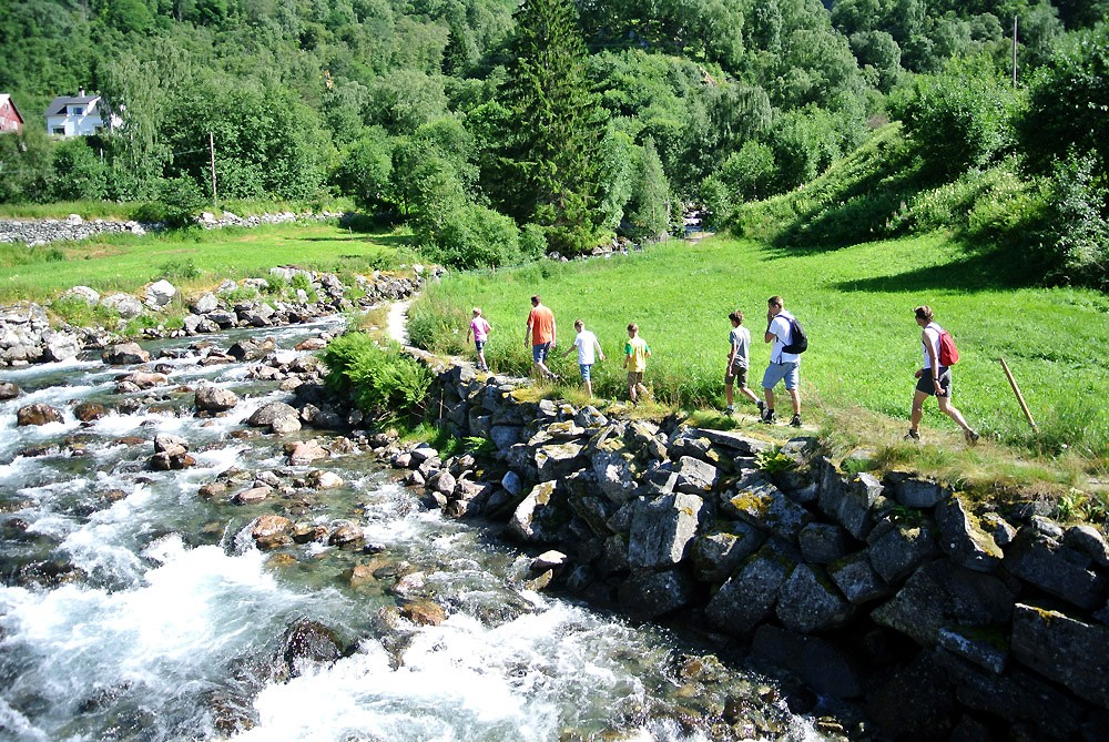 Fjord RIB Tour