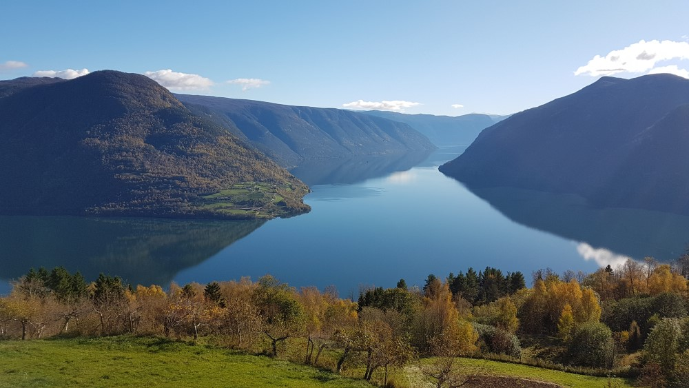 Mollandsmarka Sognefjord