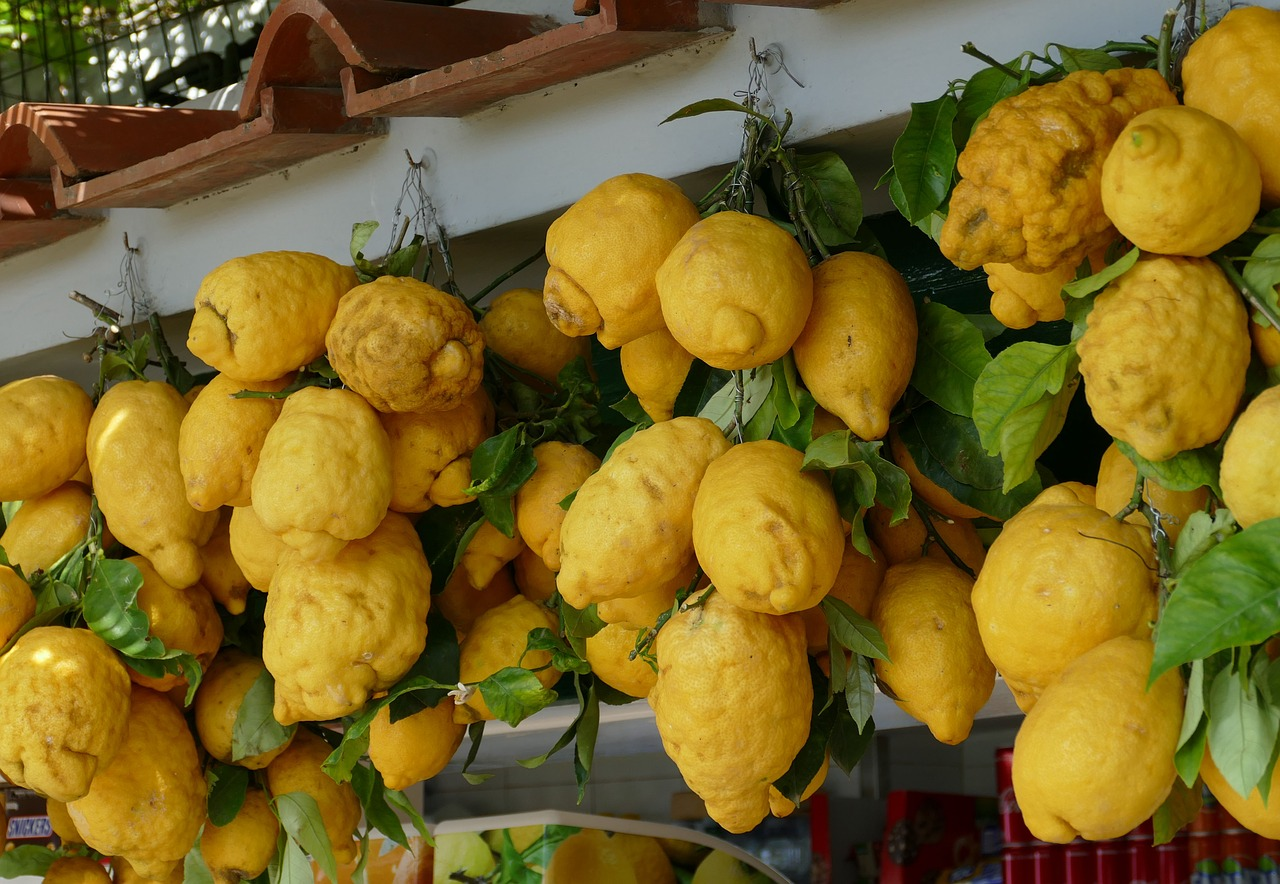 saftige italienische Zitronen
